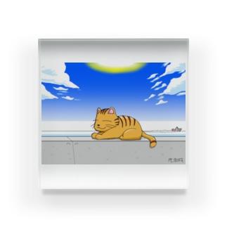 防波堤のネコ Acrylic Block