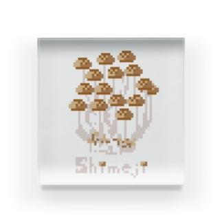 shimeji 〜しめじ〜 Acrylic Block