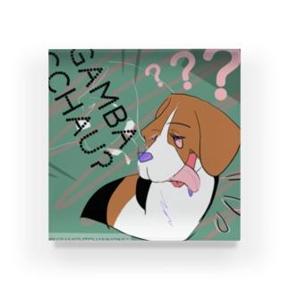 がんばらない 犬 Acrylic Block