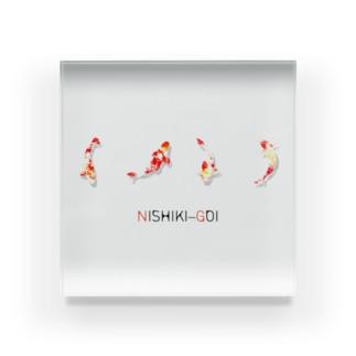 NISHIKI-GOI Acrylic Block
