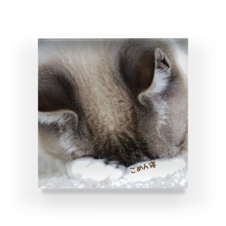 うちの猫シェイミのごめん寝(両手バージョン) Acrylic Block