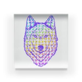 自己主張の強い一匹狼(ウルフフェイス)ブルー Acrylic Block