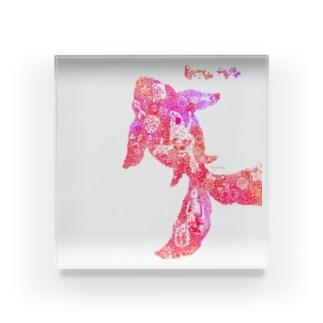 きんぎょ 赤 Acrylic Block