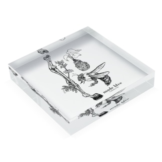 Kumanbachi , Bone of house & Spring plants Acrylic Block