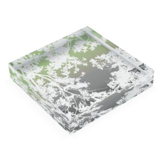 TOKIWA Acrylic Block