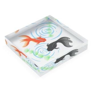 きんぎょ(立て置き用) Acrylic Block