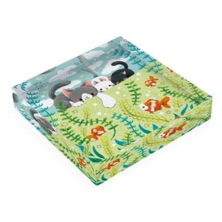 気になる金魚 Acrylic Block