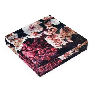 223 Acrylic Block