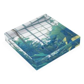植物園 Acrylic Block