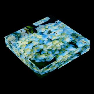ゐのsai Acrylic Blockの平置き