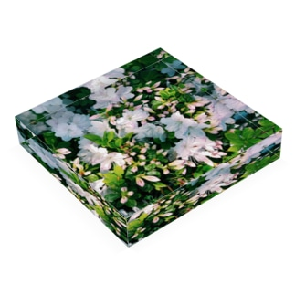 天国 Acrylic Block