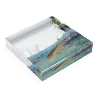 鮭 Acrylic Block
