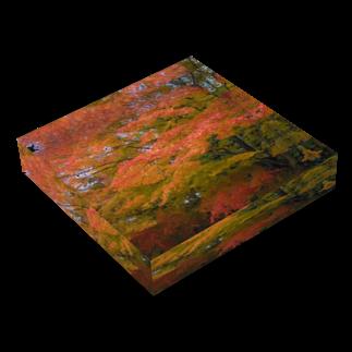 トロワ イラスト&写真館の美しき日本の紅葉3 Acrylic Blockの平置き