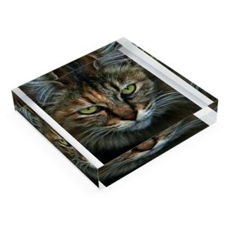 CAT Acrylic Block