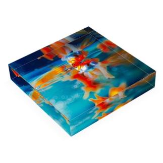 金魚2 Acrylic Block