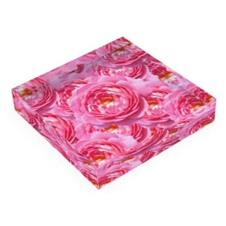 バラ園の欠片 Acrylic Block