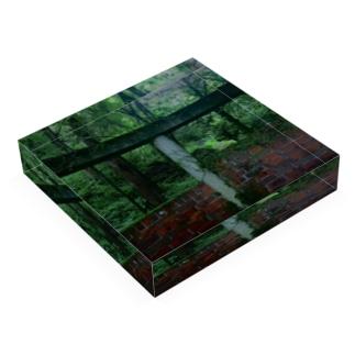シリウスの匣の森の廃墟 Acrylic Blockの平置き