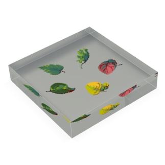 Leaves Acrylic Block