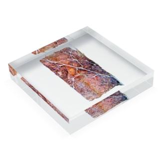 レンガ Acrylic Block