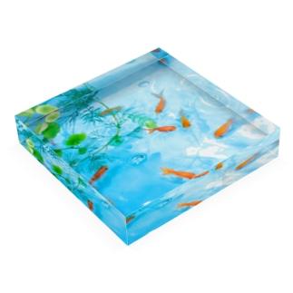 ウォーターブロックの金魚 Acrylic Blockの平置き