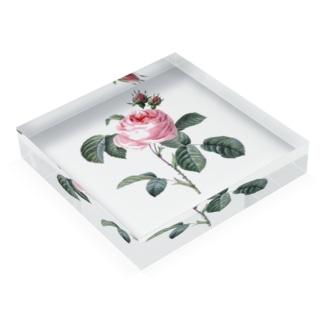 花束 Acrylic Block