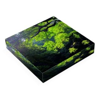 GREEN Acrylic Block