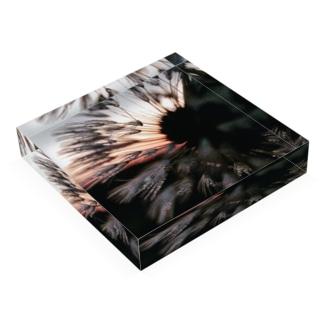 tanpopo Acrylic Block