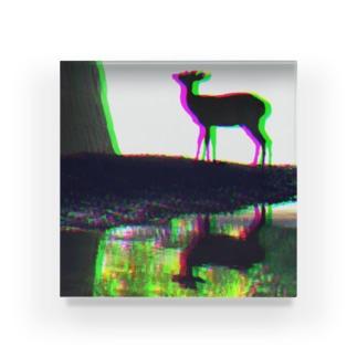 鹿 - shika - Acrylic Block