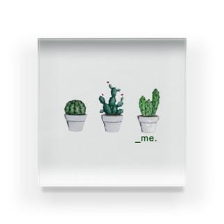 _Cactus. Acrylic Block