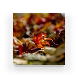 秋の彩り Acrylic Block