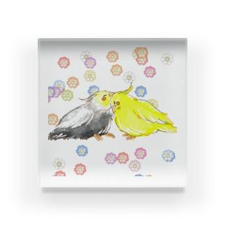 オカメインコ(花) Acrylic Block