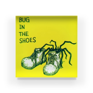 BUG in the shoes Acrylic Block