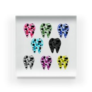 Tooth camo 色とりどり Acrylic Block
