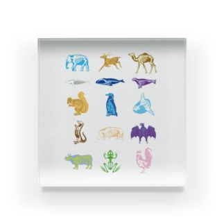 Animalia Anatomy Acrylic Block