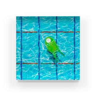 たゆたゆ Acrylic Block