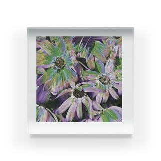 #1 Acrylic Block