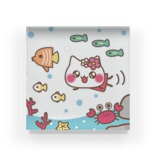 甘えんぼにゃんにゃんの日常★お魚と一緒♪アクリルブロック Acrylic Block