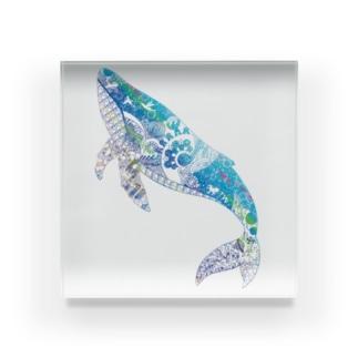 クジラの切り絵 Acrylic Block