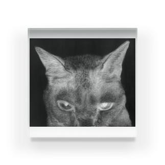 般ニャ 白黒反転ヴァージョン Acrylic Block
