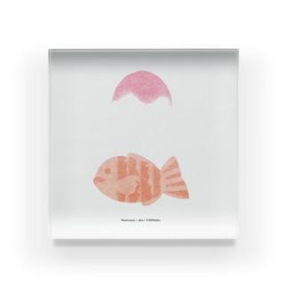 akaの鯛と氷 Acrylic Block