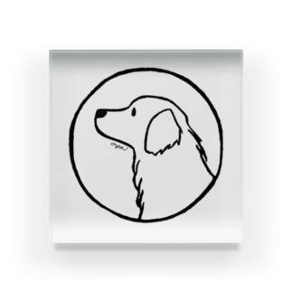 aya1のゴールデン・レトリーバー〈線・円〉 Acrylic Block