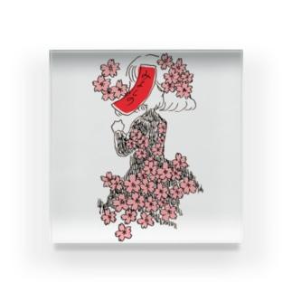 桜に赤短 Acrylic Block