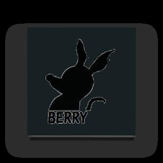 アメリカンベースのBERRY Acrylic Block