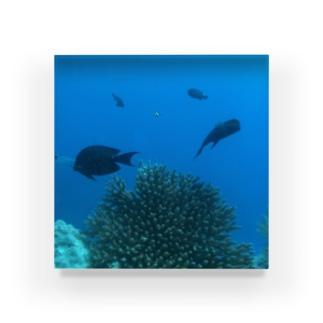 グアムの海 Acrylic Block