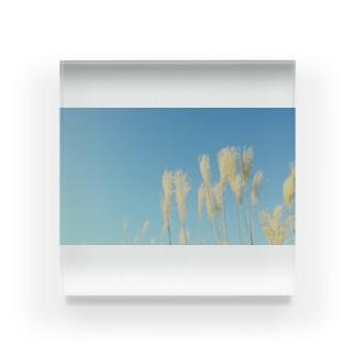 秋空 Acrylic Block