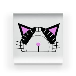 分度器猫 ハチワレ黒白 Acrylic Block