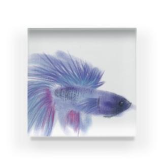 ココ Acrylic Block