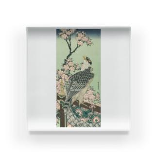 葛飾 北斎 《桜花・鷹》 Acrylic Block