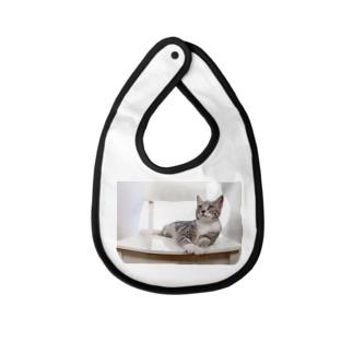 cat_20190506_8165 Baby bibs
