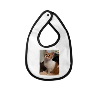 ted.0601 Baby bibs